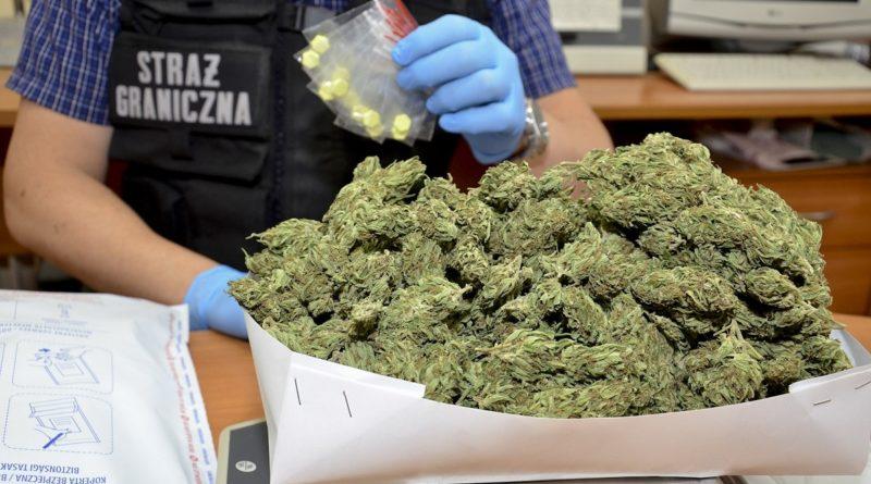 Blisko 400 porcji narkotyków nie trafi do dalszej sprzedaży