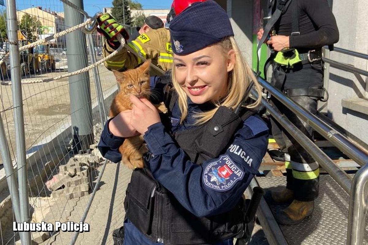 Mały kociak wpadł do włazu. Pomogli Policjanci i Strażacy
